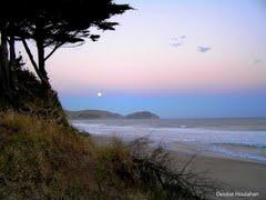 Wainui beach2